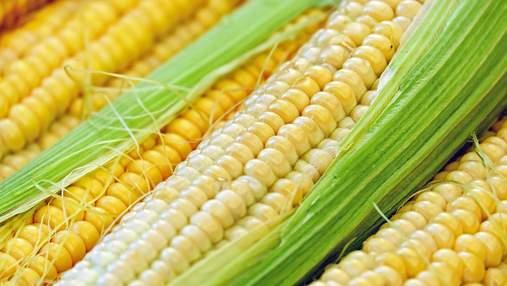 Кукуруза в портах снова подорожала