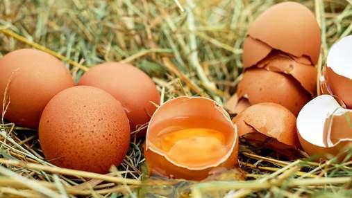 Яйця в Україні впали в ціні