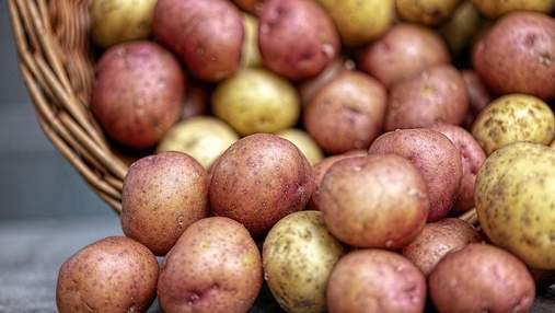 Украина уменьшила импорт картофеля
