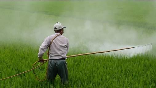Засоби захисту рослин: вибір, внесення, утилізація – що обов'язково треба знати аграрію
