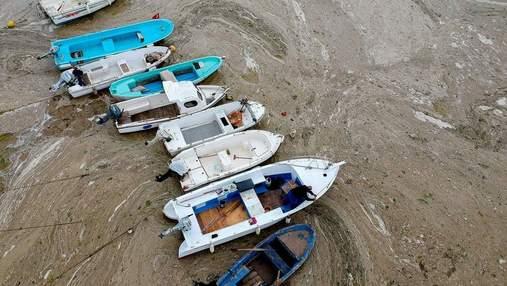 """Наибольшее распространение в истории: Мраморное море покрылось """"слизью"""", разрушающей экосистему"""