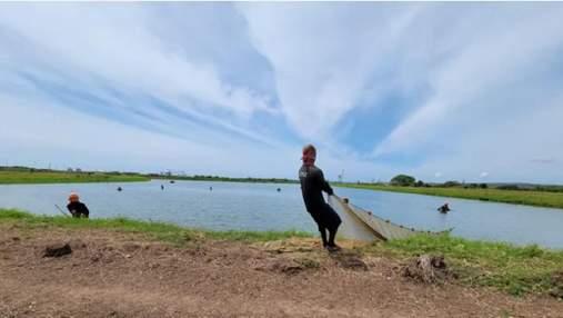 Креветки, раки и тилапия вместо молока: как фермер поменял бизнес