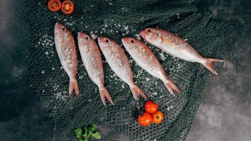 Як обрати свіжу рибу: секрети для тих, хто дорожить своїм здоров'ям
