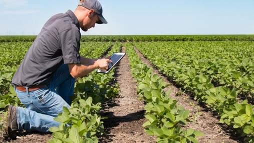 Выращивай и расти: как получить максимальную эффективность с гербицидом Базагран®