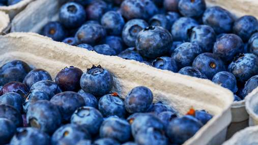 Украинские ученые работают над программами выращивания самой дорогой ягоды