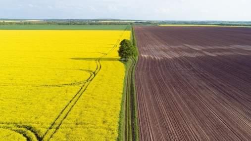 """У россиян будут забирать незаконно """"купленную"""" украинскую землю, – Минагро"""