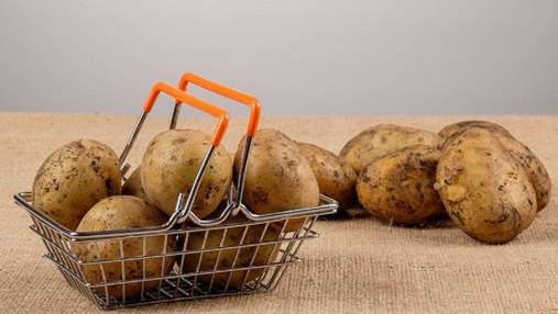 Картофельный коллапс: украинские аграрии не могут продать урожай