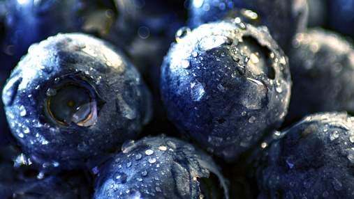 Сезон чорниці набирає обертів: скільки просять за ягоду