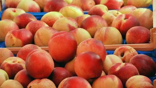 Розпочався сезон персиків: скільки просять за фрукт в Україні