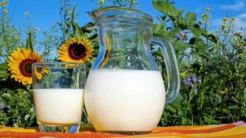Дефицит молока в Украине планируют перекрыть промышленными хозяйствами