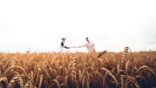 Фермери отримають компенсацію за втрачені посіви, – Шмигаль