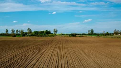 Як українцям безоплатно отримати землю, – інструкція Мін'юсту
