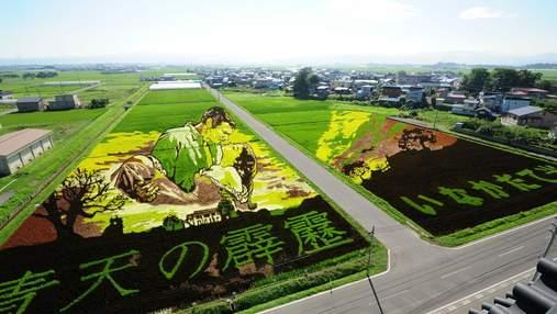 Щоб подолати демографічну кризу: в Японії селяни створюють на рисових полях живі картини
