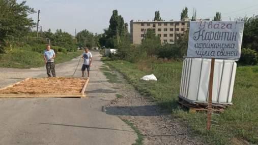 Вспышку африканской чумы свиней зафиксировали в Запорожье