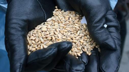 У Держрезерві попередили про критично низькі запаси зерна