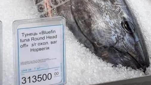 Тунець за 300 тисяч: у Києві продають рибу вартістю, як авто