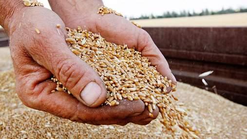 Не газом єдиним: Москва хоче шантажувати світ ще й зерном