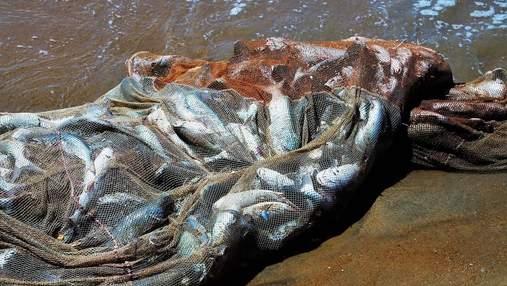 Штрафи за рибне браконьєрство в Україні збільшені в десятки разів