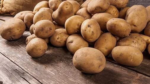 Картофель для украинских покупателей стоит в 5 раз дороже, чем для экспорта