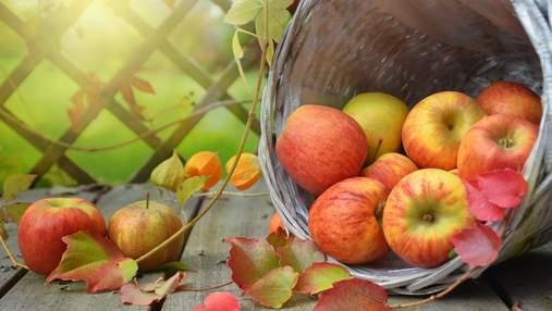 Настав сезон: чому варто додати яблука до свого раціону – 5 причин