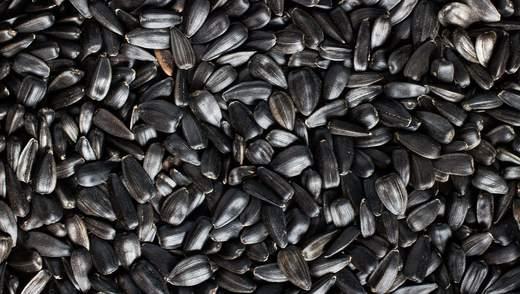 Україна суттєво збільшила експорт насіння до ЄС