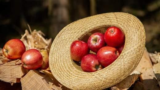 Яблука додали в ціні: який сорт подорожчав найбільше