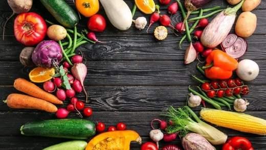Органическое сельское хозяйство: экологические преимущества и охрана окружающей среды